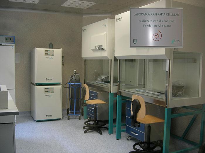 Laboratoire de thérapie cellulaire ,Université Tor Vergata de Rome (Italie)